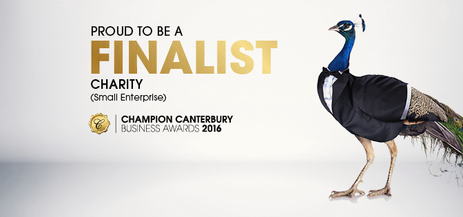 Champion Canterbury Business Award Finalist